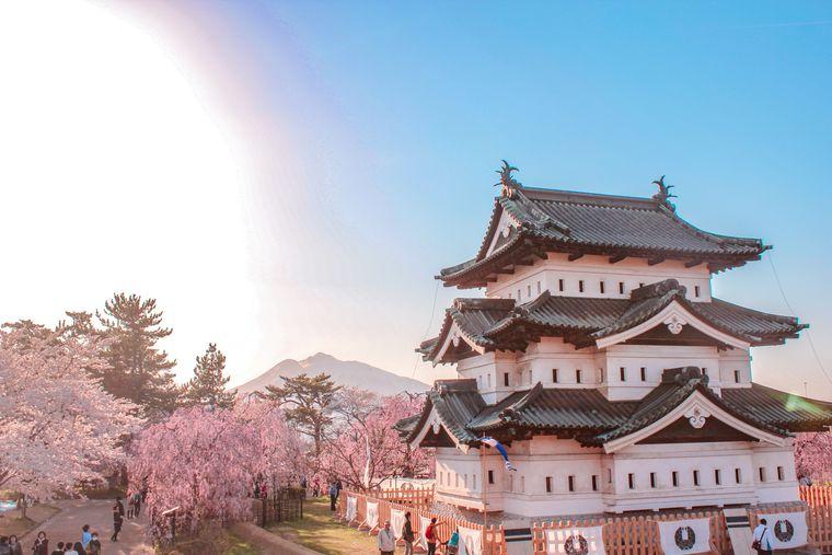 桜と弘前城と岩木山